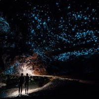 Couple standing underneath Glow Worm Sky in Waipu Cave, new Zealand