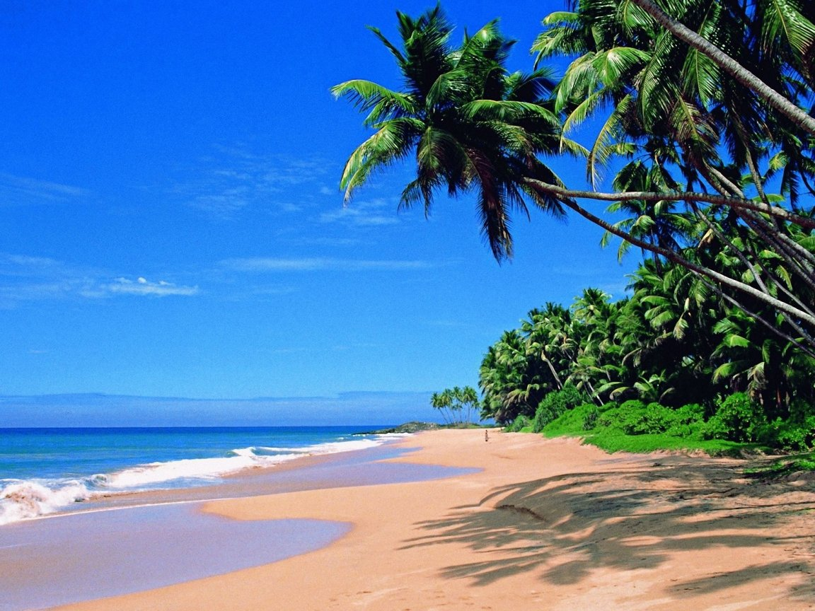 goa-most-beautiful-beaches